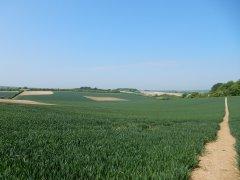 04-Three-Castles-path-near-Lower-Wield-farm.JPG