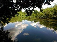 03-Chilworth-pond-clouds.jpg